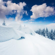 Winter landscape — Stock Photo #34935955