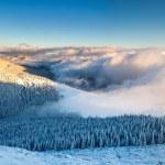 Winter landscape — Stock Photo #34937121