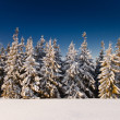 Winter landscape — Stock Photo #34938429