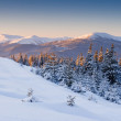 Winter landscape — Stock Photo #34938449