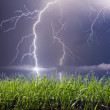 Stock Photo: Lightning landscape