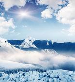 Mountain landscape — Foto Stock