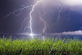 Lightning landscape — Stock Photo
