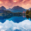 Mountain lake in High Tatra — Stock Photo #49157839