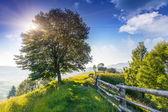 Día soleado en las montañas — Foto de Stock