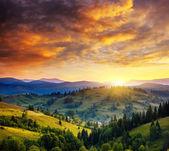 Belas colinas verdes ao entardecer — Fotografia Stock