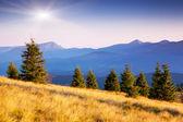 Rural alpine landscape — Stock Photo