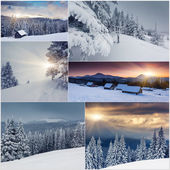 Collage of Carpathian landscape — Stock Photo