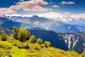 Bela vista de prados alpinos — Fotografia Stock