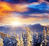 Fantastic morning mountain landscape — Stock Photo