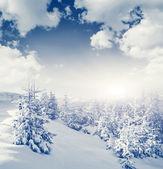 Fantastic winter landscape — Stock Photo