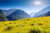Alpine meadows in Zhabeshi village — Stock Photo