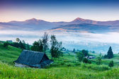 View of rural alpine landscape — Stockfoto