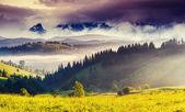 Iew of alpine meadows — Stock Photo