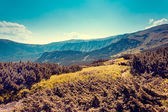 View of rural alpine landscape — Foto de Stock