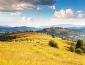 Sunny mountain landscape — Stock Photo