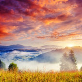 Sunny hills under cloudy sky — Foto Stock