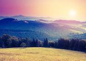 Carpathian landscape — Stock Photo