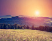 Sunny hills under morning sky — Stock Photo