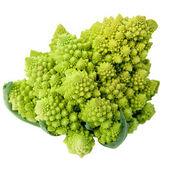 One whole Romanesco broccoli (Brassica oleracea) on a white background. — Stock Photo