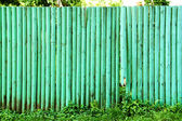 Wooden fence green background. — Stock Photo