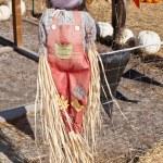Scarecrow — Stock Photo #13273418