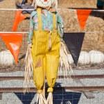 Scarecrow — Stock Photo #13645603