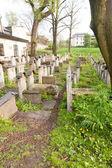 Old Jewish cemetery — Stock Photo