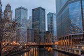 芝加哥圈 — 图库照片