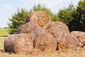 Haystacks — Stock Photo