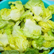 Iceberg Wedges Salad — Stockfoto