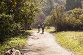 Rancho San Antonio Hike — Stock Photo