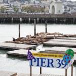 Pier 39 — Stock Photo #30096897