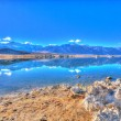 Stock Photo: Mono Lake South Tufa