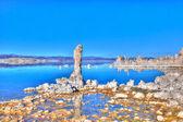 Mono Lake South Tufa — Stock Photo