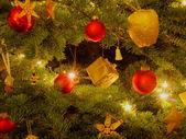 Christmas tree — Foto de Stock