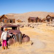 Bodie State Historic Park — Stock Photo