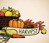 蔬菜和水果 — 图库矢量图片