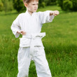 Little boy make karate exercises — Stock Photo