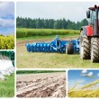 Collage Ploughing tractor at field cultivation — Stock Photo #13612768