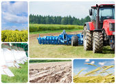Collage Ploughing tractor at field cultivation — Stock Photo