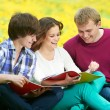 Three smiling young students outdoors - Foto Stock