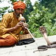 Charmer of snake in India - Stock Photo