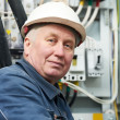 Royalty-Free Stock Photo: Portrait of adult Electrician