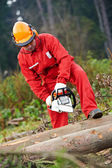 Lumberjack Worker With Chainsaw In The Forest — Foto de Stock