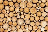 Sfondo di legno di pino — Foto Stock
