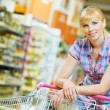 Stock Photo: Woman with shopping cart