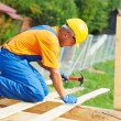 Stock Photo: Roofer carpenter works on roof