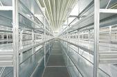 Empty new modern shelves in warehouse — Stock Photo