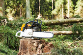 Chainsaw on cut wood in forest — Stock Photo
